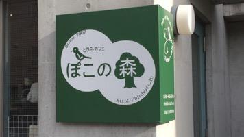 とりみカフェ ぽこの森のメインイメージ