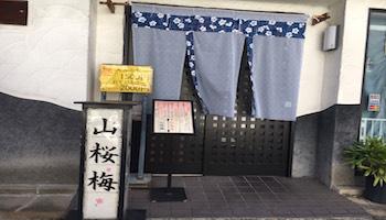 山桜梅のメインイメージ