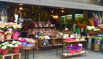 florist Douze 三宮店のメインイメージ